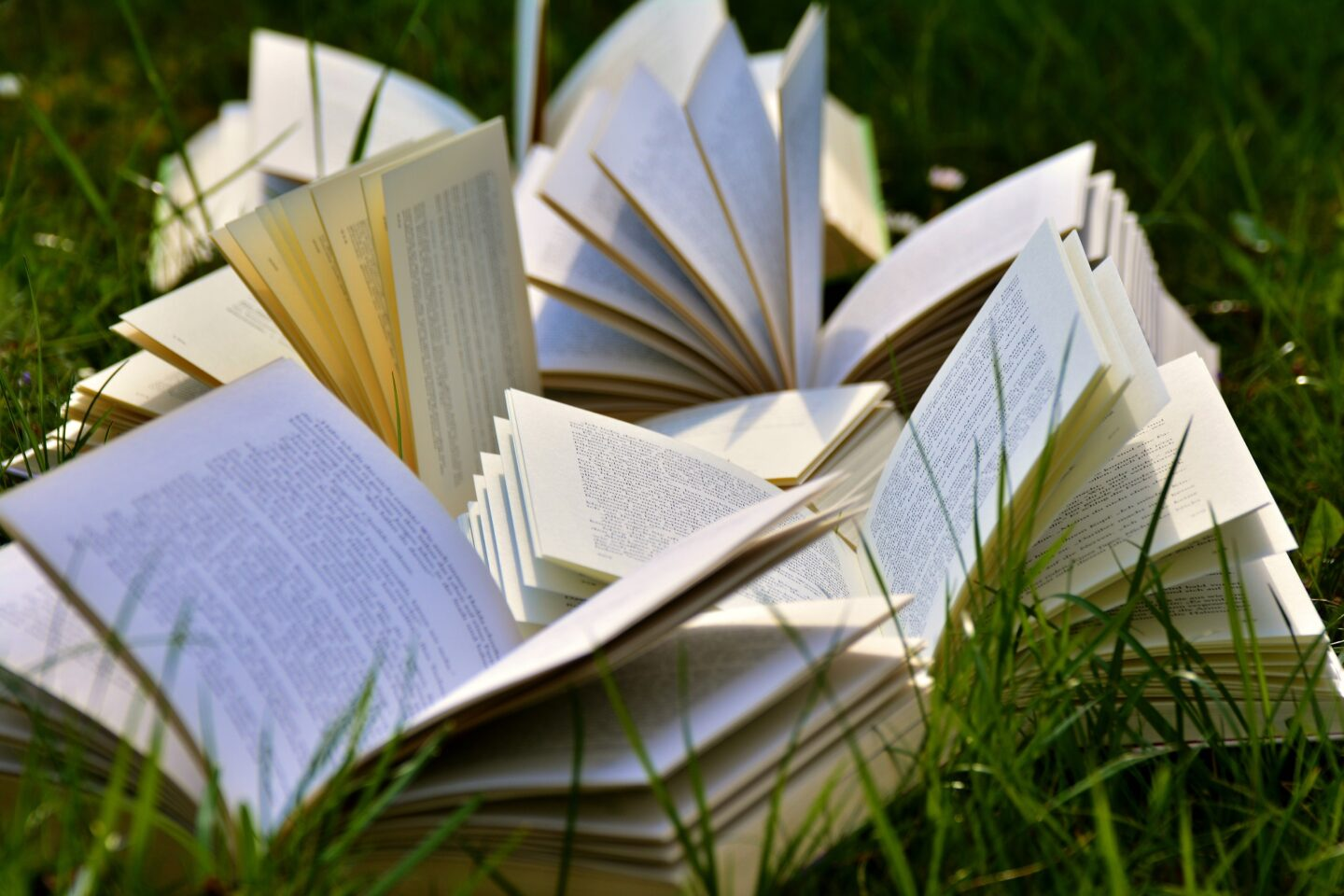 Take reading beyond the page with one of our favourite literature festivals.